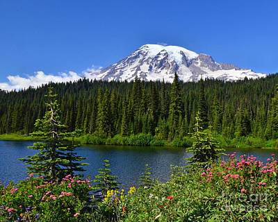 Paradise Photograph - #81 Reflection Lake And Blooms by Jack Moskovita