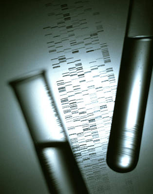 Dna Sequencing Print by Tek Image