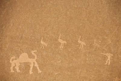 A Close View Of Ancient Petroglyphs Print by Taylor S. Kennedy
