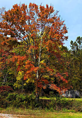 Autumn Photograph - A Country Place Painted by Steve Harrington