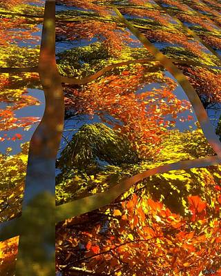 A Fall Perspective Of Color Print by Rene Crystal