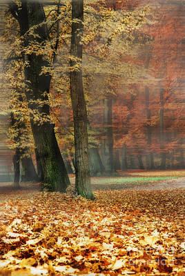 A Foggy Autumn Day Print by Hannes Cmarits