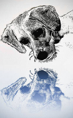 Puppies Digital Art - A Friendly Reflection by Bill Cannon