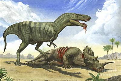 A Gorgosaurus Libratus Stands Print by Sergey Krasovskiy