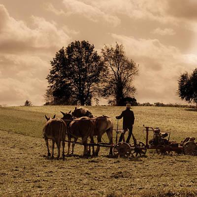Amish Farmer Photograph - A Hard Day's Work by Trish Tritz