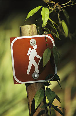 A Hiking Trail Marker Print by Raymond Gehman