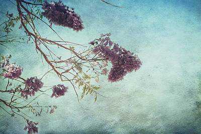 Blooming Digital Art - A Moment In The Soul Can Last Forever by Laurie Search