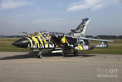 A Panavia Tornado Aircraft With Special Print by Timm Ziegenthaler