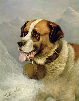Dogs In Snow Painting - A Portrait Of A St. Bernard by James E Bourhill