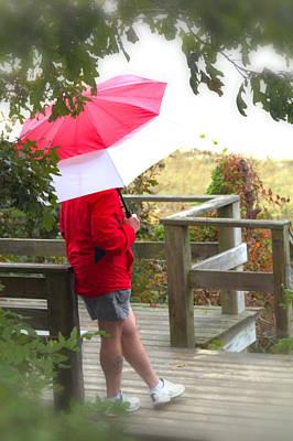 Rainy Day Photograph - A Rainy Summer's Day by Karol Livote