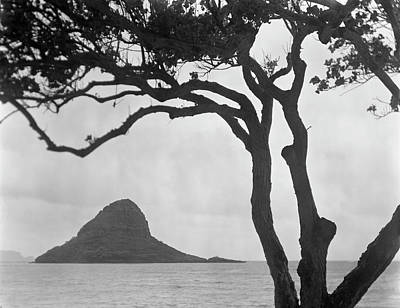 A Rock Formation In The Pacific Ocean, Oahu, Hawaii Print by Brian Caissie