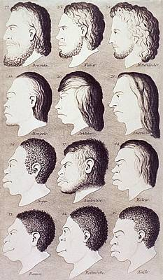 A Series Of Human Heads From Difference Print by Everett