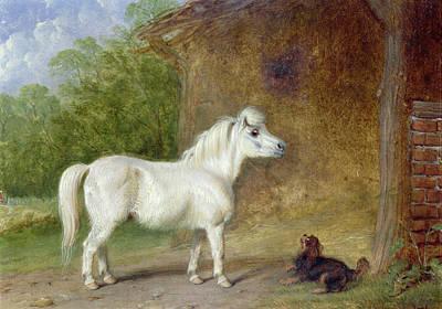 A Shetland Pony And A King Charles Spaniel Print by Martin Theodore Ward