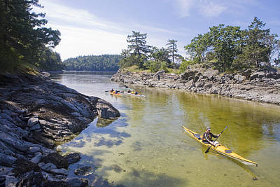 Valdes Photograph - A Small Group Kayaks by Taylor S. Kennedy