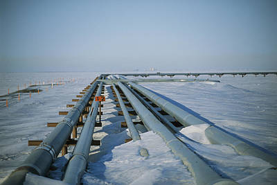 Transportation Of Goods Photograph - A Stretch Of The Trans-alaskan Pipeline by Joel Sartore