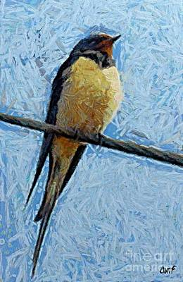 Swallow Mixed Media - A Swallow On A Wire by Dragica  Micki Fortuna