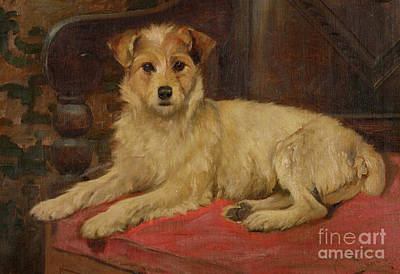 Wright Barker Painting - A Terrier On A Settee by Wright Barker