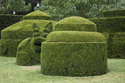 A Topiary Garden At Longwood Gardens Print by Scott S. Warren
