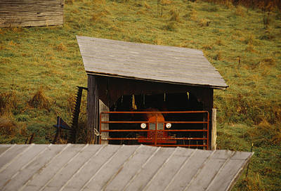 Etc. Photograph - A Tractor Sheltered In A Shed by Raymond Gehman