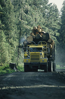 Transportation Of Goods Photograph - A Truck Filled With Cut Lumber Travels by Stephen Sharnoff