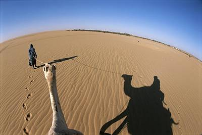 A Tuareg Tribesman Leads His Camel Print by Carsten Peter