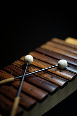 Part Of Photograph - A Xylophone by Studio Blond