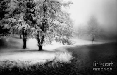 Abbots Lake In The Fog Bw Print by Dan Carmichael