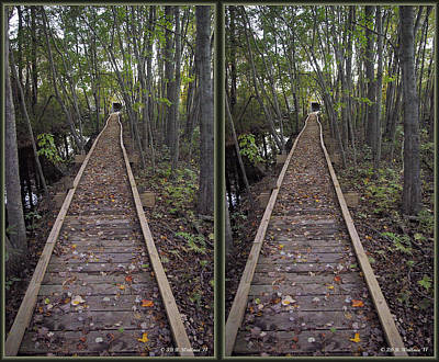 Abbott's Mill Trail - Gently Cross Your Eyes And Focus On The Middle Image Print by Brian Wallace