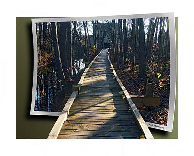 Abbotts Nature Trail Print by Brian Wallace