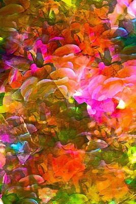 Abstract 271 Print by Pamela Cooper