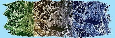 Abstract Fusion 160 Print by Will Borden