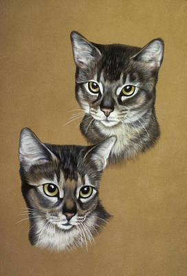 Abyssinian Cats Print by Patricia Ivy