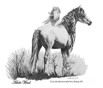 Custom Horse Portrait Drawing - Adobe Wind by Marianne NANA Betts