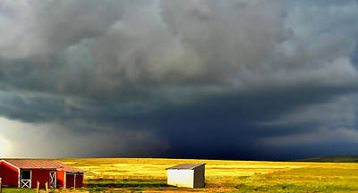 Afternoon Storm Print by Ellen Heaverlo