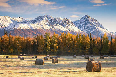 Alaska Farming Print by Alaska Photography