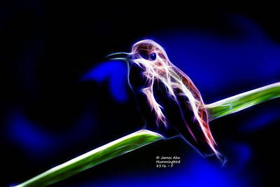 Allens Hummingbird - Fractal Print by James Ahn