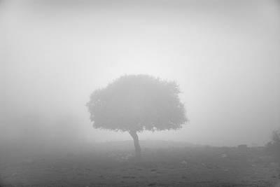 Alone In The Fog Print by Guido Montanes Castillo