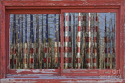 Picture Window Frame Photos Art Photograph - America Still Beautiful Red Picture Window Frame Photo Art View by James BO  Insogna