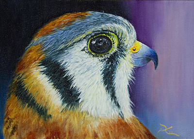 American Kestrel Paintings for Sale