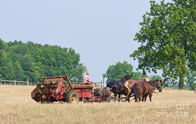 Amish Photograph - Amish Manure Spreader by David Arment