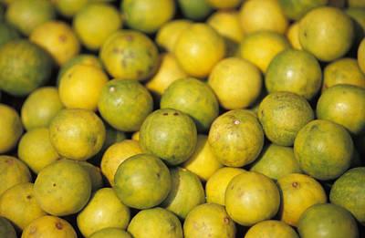 An Enticing Display Of Lemons Print by Jason Edwards