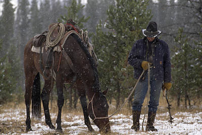 An Outfitter Lets His Horse Graze Print by Annie Griffiths