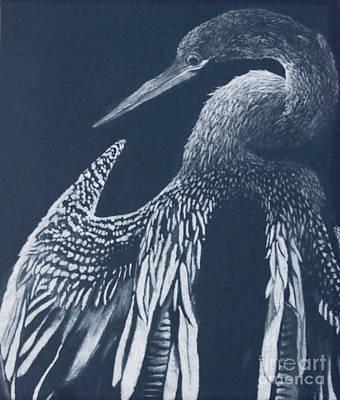 Anhinga Drawing - Anhinga by Sarah Mushong