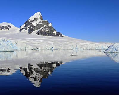 Antartica Photograph - Antarctic Calm by Tony Beck