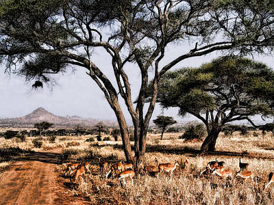 Antelope On The African Plains Print by Elaine Plesser