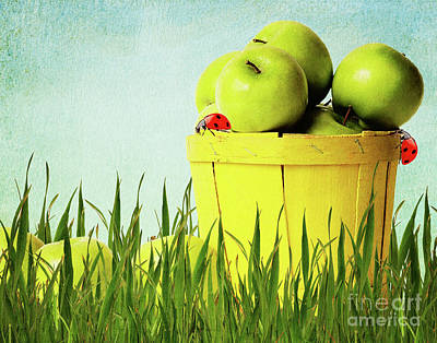 Apples Print by Angela Doelling AD DESIGN Photo and PhotoArt