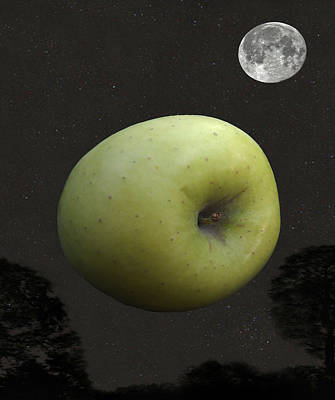Lepidopterans Digital Art - Apple by Eric Kempson