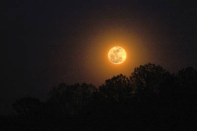 Eternally Photograph - April 2012 Full Moonrise by Jerilyn Skyface Flowers