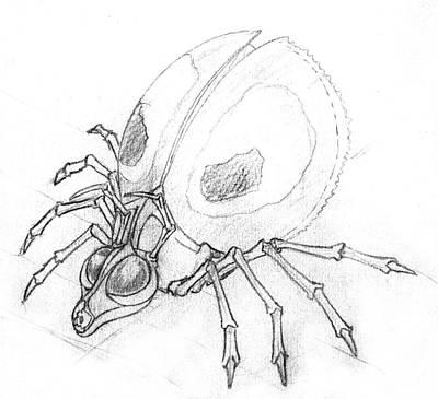 Corey Drawing - Arachnoid by Corey Finney