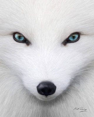 Arctic Fox Original by Bill Fleming